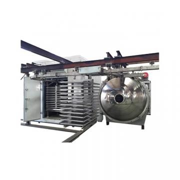 Fully Automatic Vacuum Freeze Drying Fruit Machine with Factory Sales
