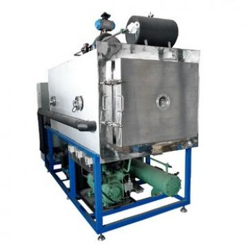 Mini Home Fruit Processing Vacuum Freeze Dryer, Vegetable Drying Machinery