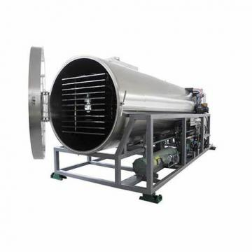 Microwave Vacuum Tray Drying Machine with High Effiency for Drying Food/Chemical/Fruits/Nuts.