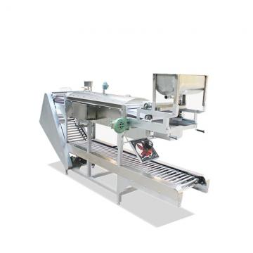 Fried Instant Noodle Making Machines Production Line From China